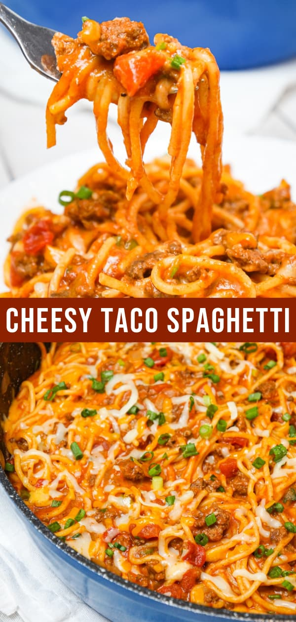 Cheesy Taco Spaghetti is an easy weeknight dinner recipe loaded with ground beef, Rotel diced tomatoes and chilies, green onions and shredded cheese all tossed in taco seasoning and tomato sauce.